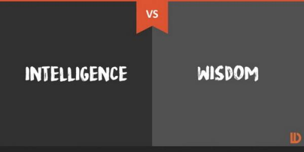 the difference between intelligence and wisdom